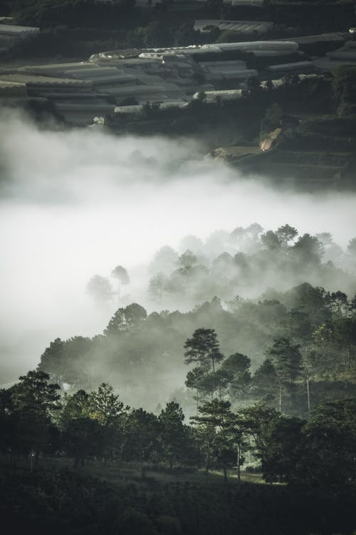 Základová fotografie zdarma na téma letecký snímek, mlha, ptačí perspektiva, shora