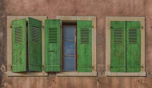 Foto stok gratis Arsitektur, dinding, hijau, windows