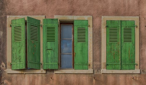 Fotos de stock gratuitas de arquitectura, muro, ventanas, verde
