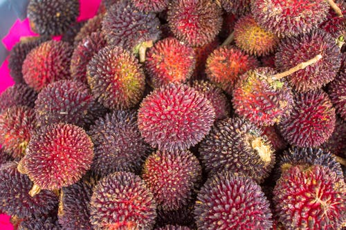 Free stock photo of rambutan