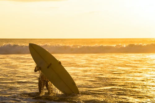 Free stock photo of beach, sunset, surfing