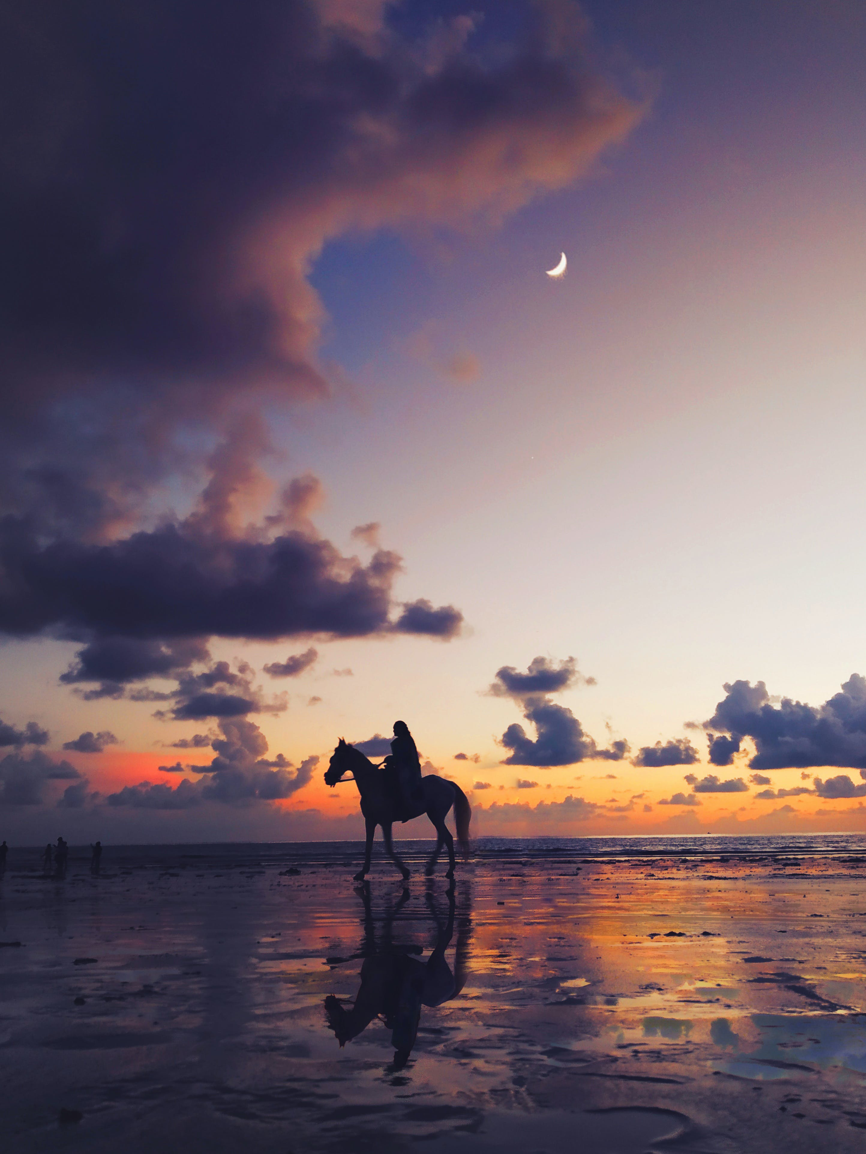 Silhouette Photo of Person Riding on Horse in Seashore
