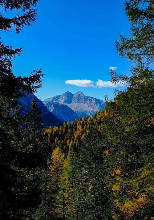 公園, 天性, 天空, 山 的 免费素材照片