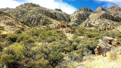 Základová fotografie zdarma na téma chaparral, hora, kámen, kaňon
