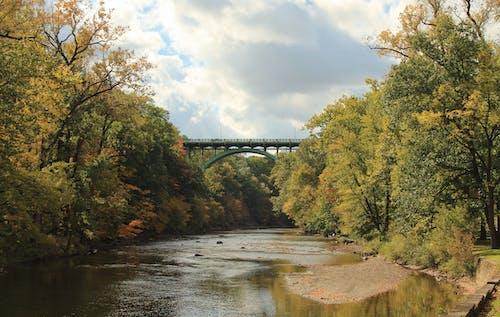 Ilmainen kuvapankkikuva tunnisteilla pilvi, puisto, silta, syksyn värit