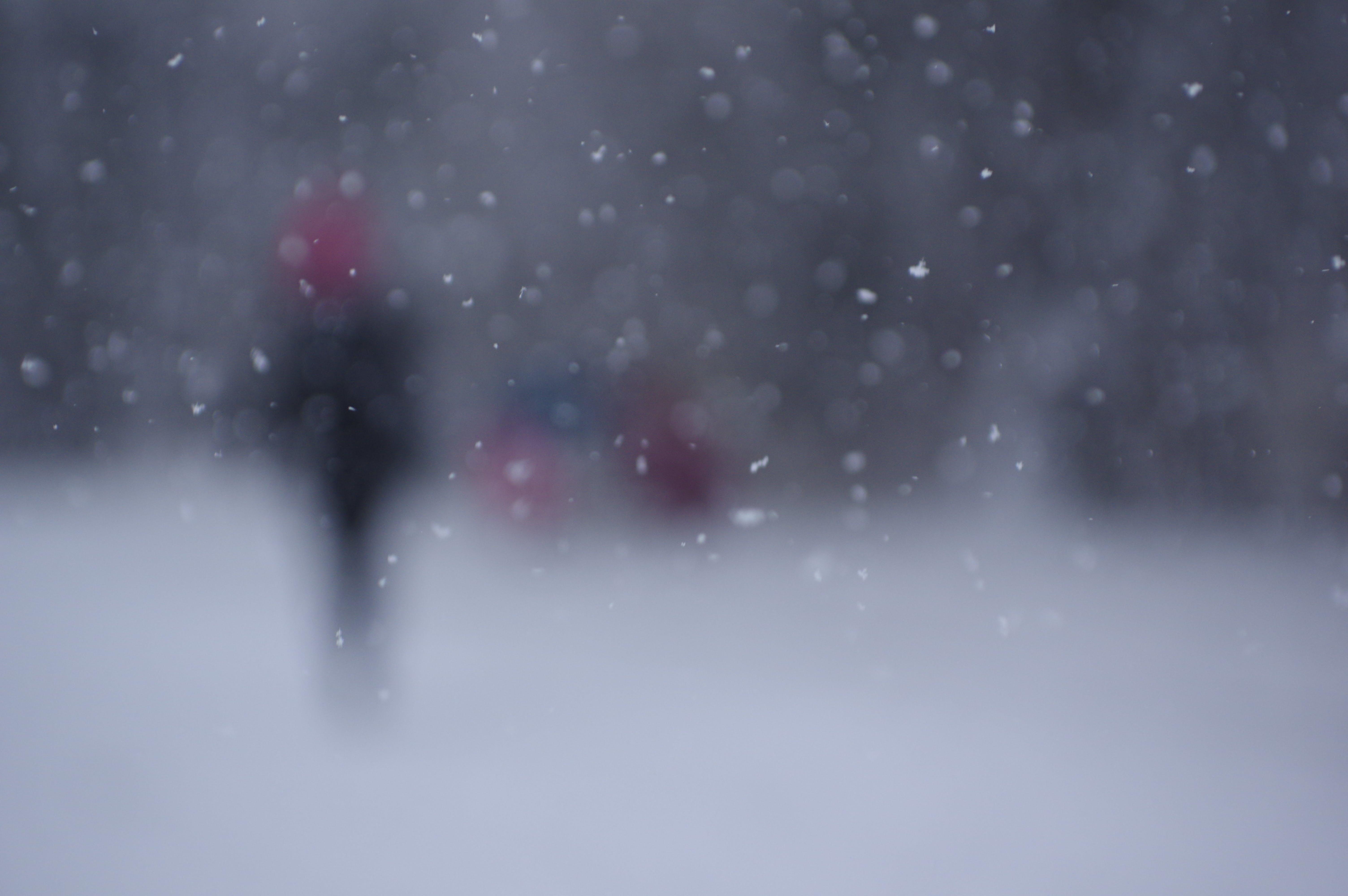 Foto d'estoc gratuïta de hivern, neu