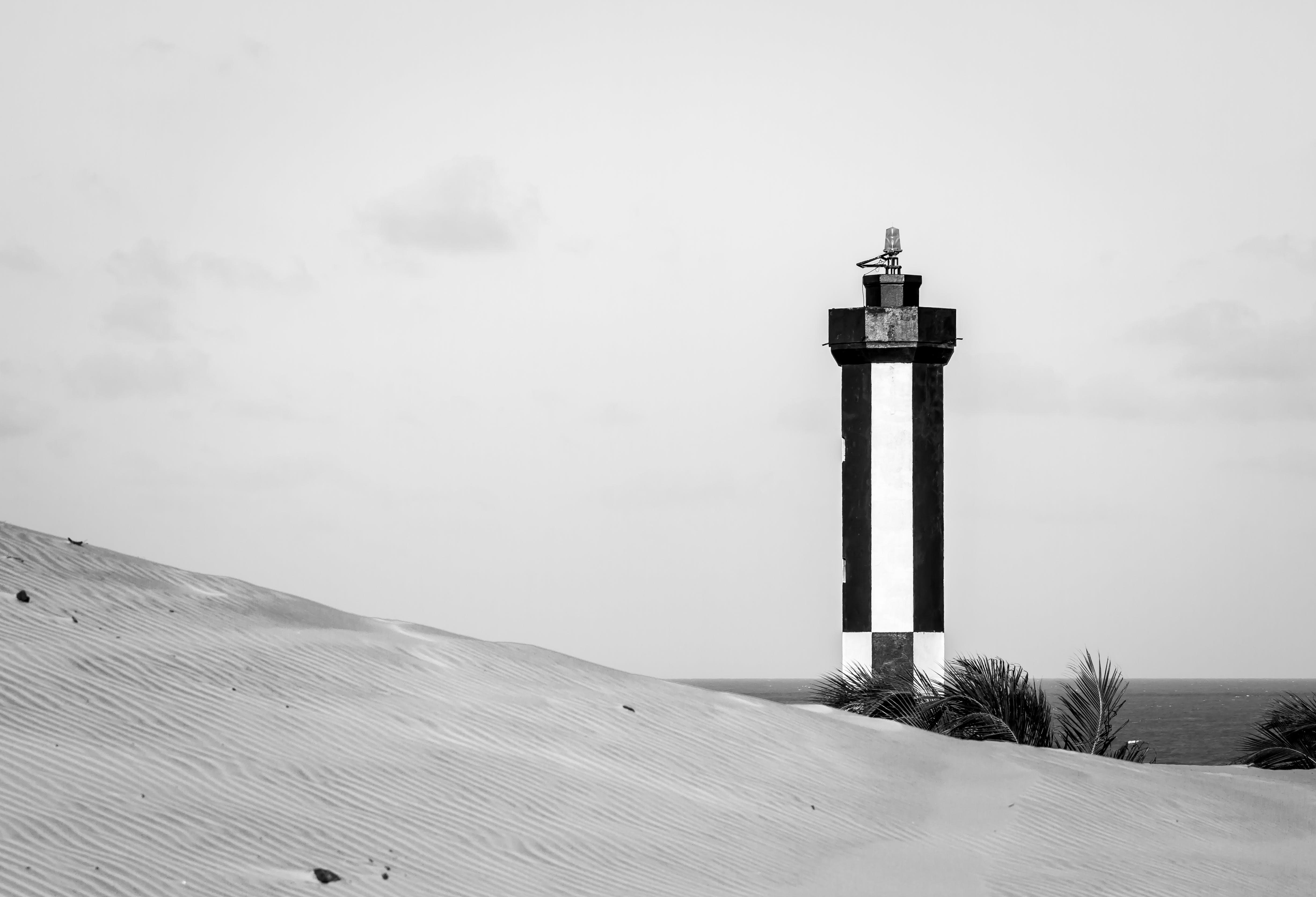 คลังภาพถ่ายฟรี ของ กลางวัน, ขาวดำ, ความปลอดภัยชายหาด, ชายหาด