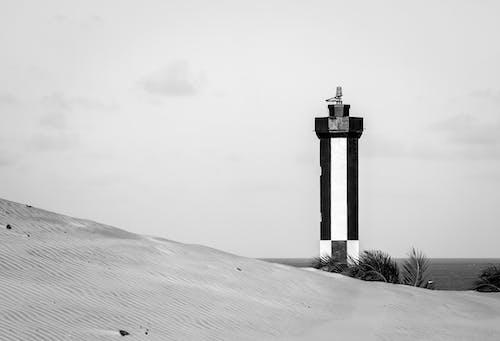 Foto stok gratis alam, badan air, depan pantai, Fajar