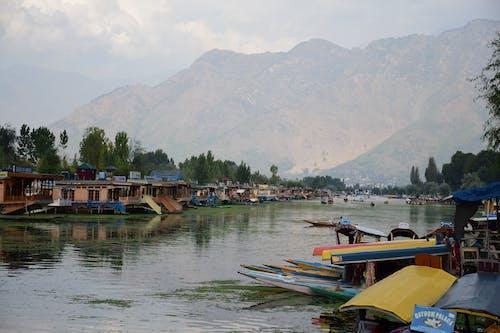 カシミール, ダル湖, ボート, ボートハウスの無料の写真素材
