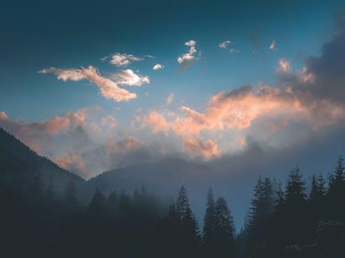 Kostenloses Stock Foto zu bäume, berg, himmel, hinterleuchtet