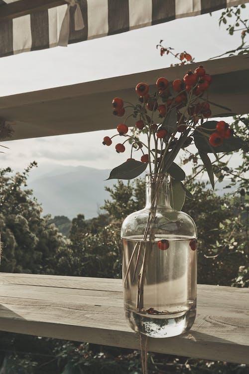 Бесплатное стоковое фото с атмосфера, белый, вино, дневной свет