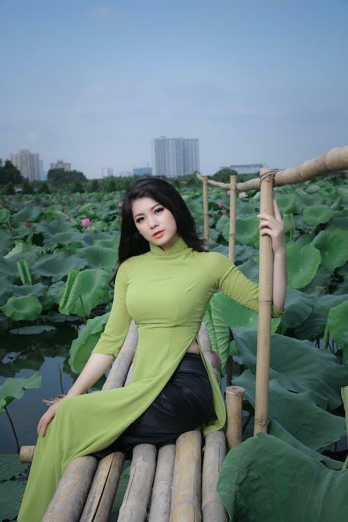Ingyenes stockfotó álló kép, ao dai, ázsiai nő, bambusz témában