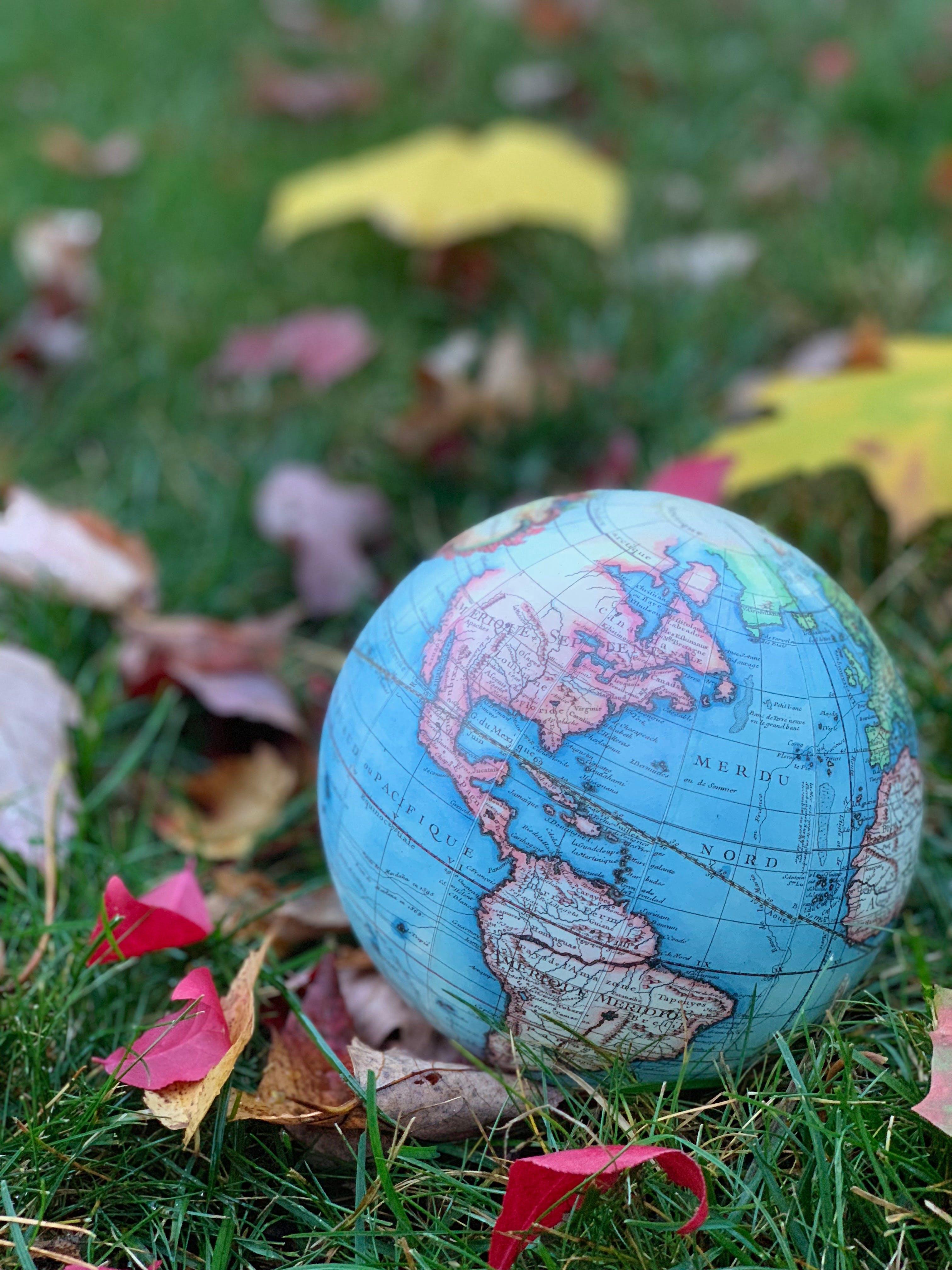 Free stock photo of fall colors, fall foliage, fall leaves, globe