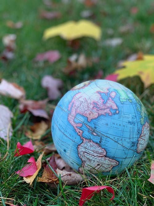 Free stock photo of fall colors, fall foliage, fall leaves, globe