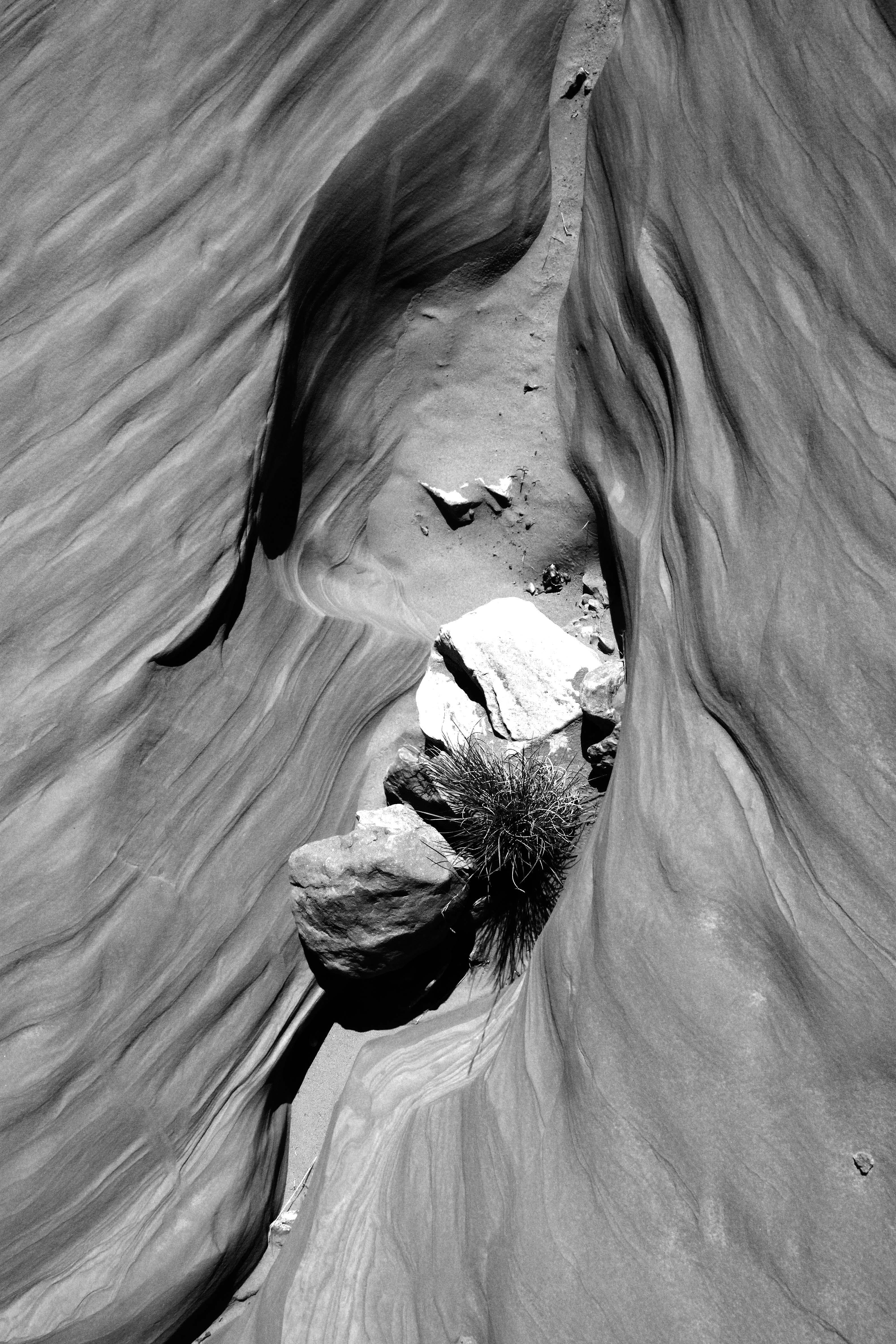 Grayscale Photography of Antelope Canyon