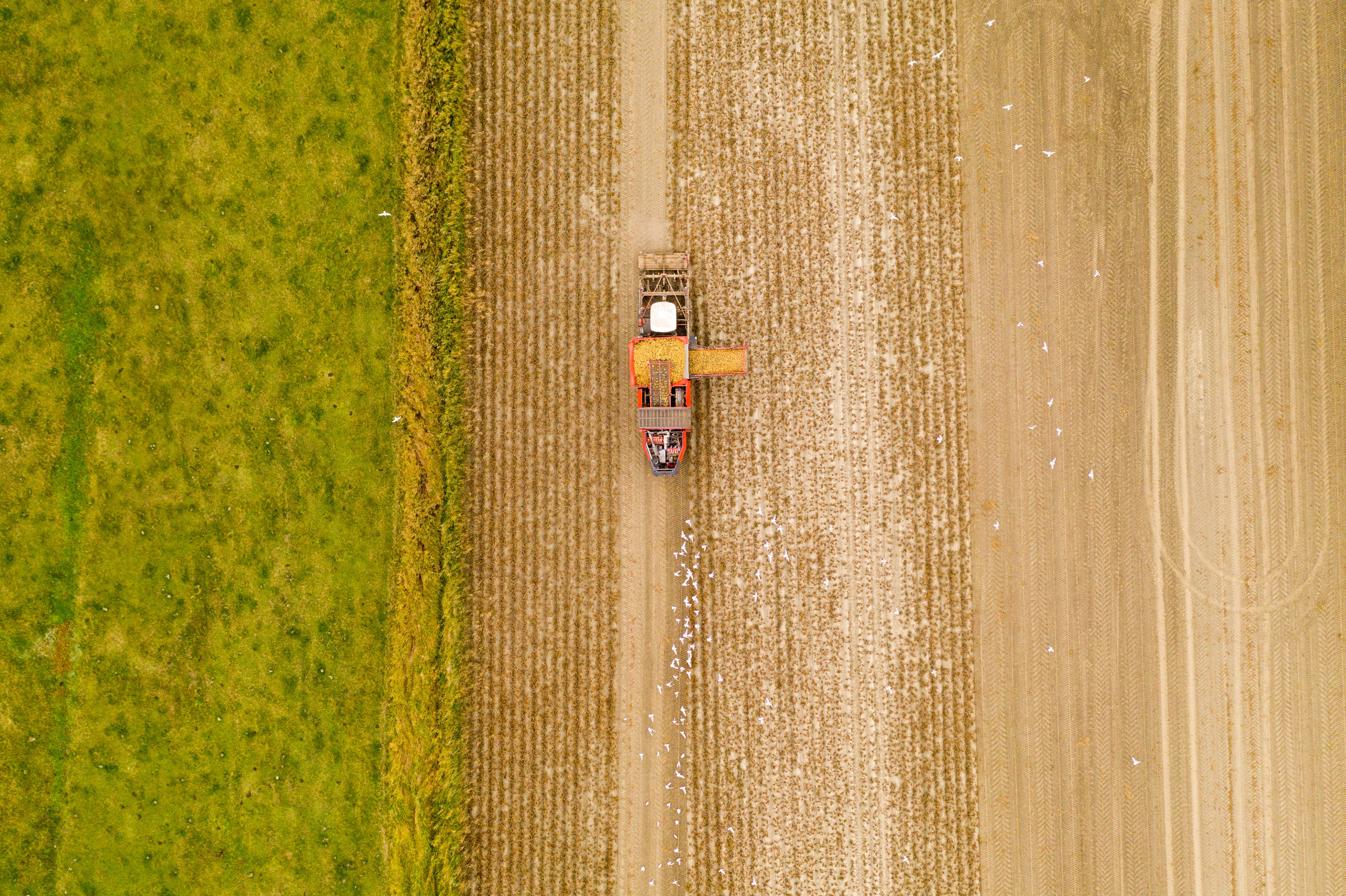 Free stock photo of agricultural, agricultural machine, dji, drone footage