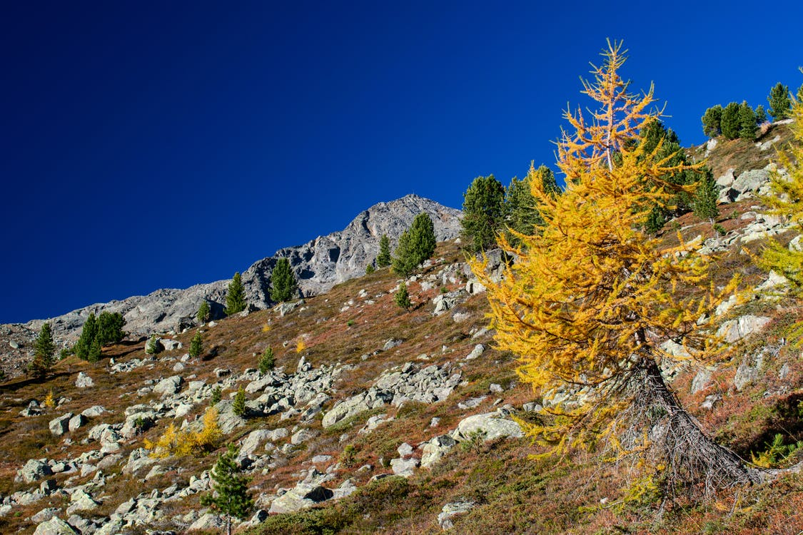 alps, blue skies, colors of autumn