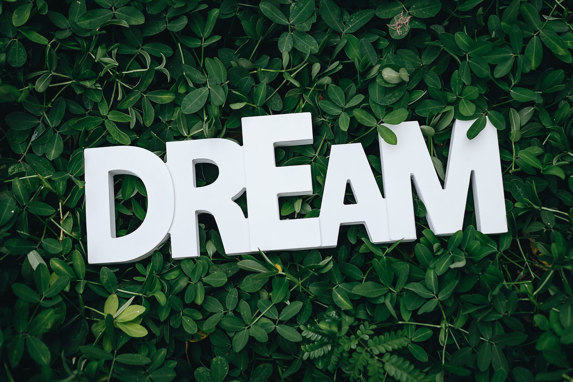 The average human dream lasts 2-3 seconds