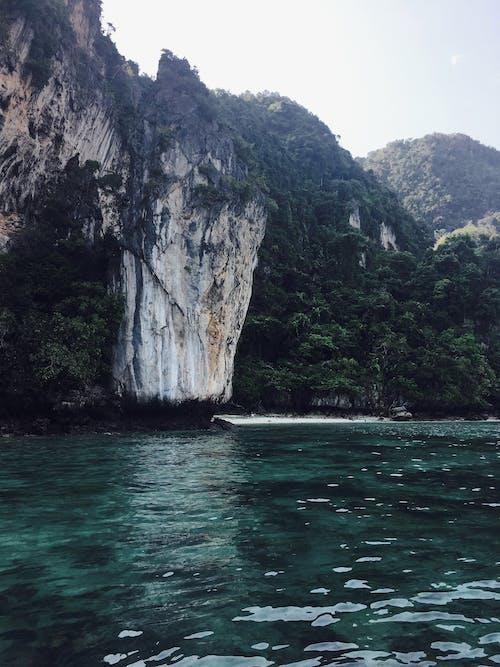 Gratis stockfoto met apen, Azië, bergen, blauw