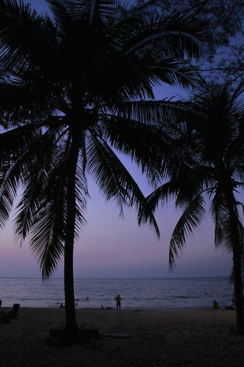Бесплатное стоковое фото с голубой, горы, закат, зеленый