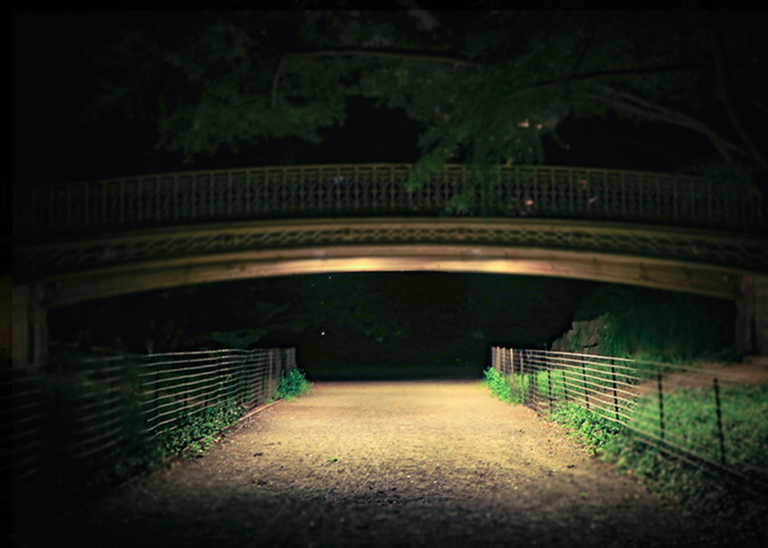 Free stock photo of #calm, #central park, #city parks, #enchanted