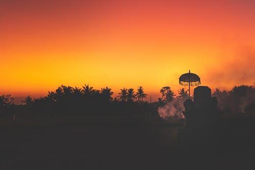 açık, ağaçlar, akşam, arka fon içeren Ücretsiz stok fotoğraf