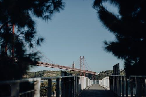 25 de abril bridge, 가벼운, 거리, 건축의 무료 스톡 사진