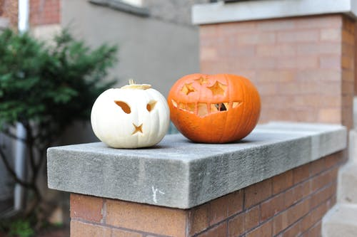 Selective Focus Photo of Pumpkins On Ledge