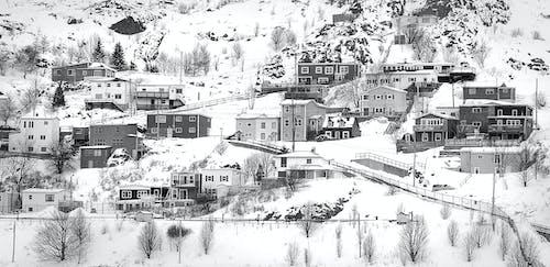 Foto profissional grátis de casas, cidade, colina, com frio