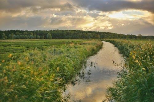 Photos gratuites de clairière, eau, exploitation agricole, ferme
