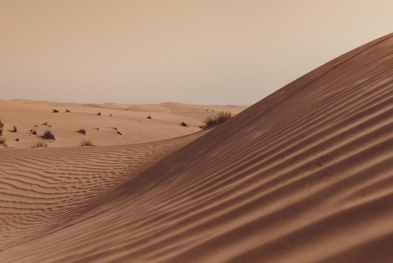 Free stock photo of desert, dunes, golden sun
