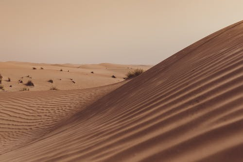 Free stock photo of desert, dunes, golden sun