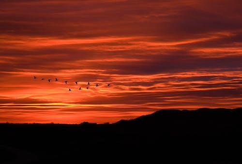 Fotobanka sbezplatnými fotkami na tému večerná obloha