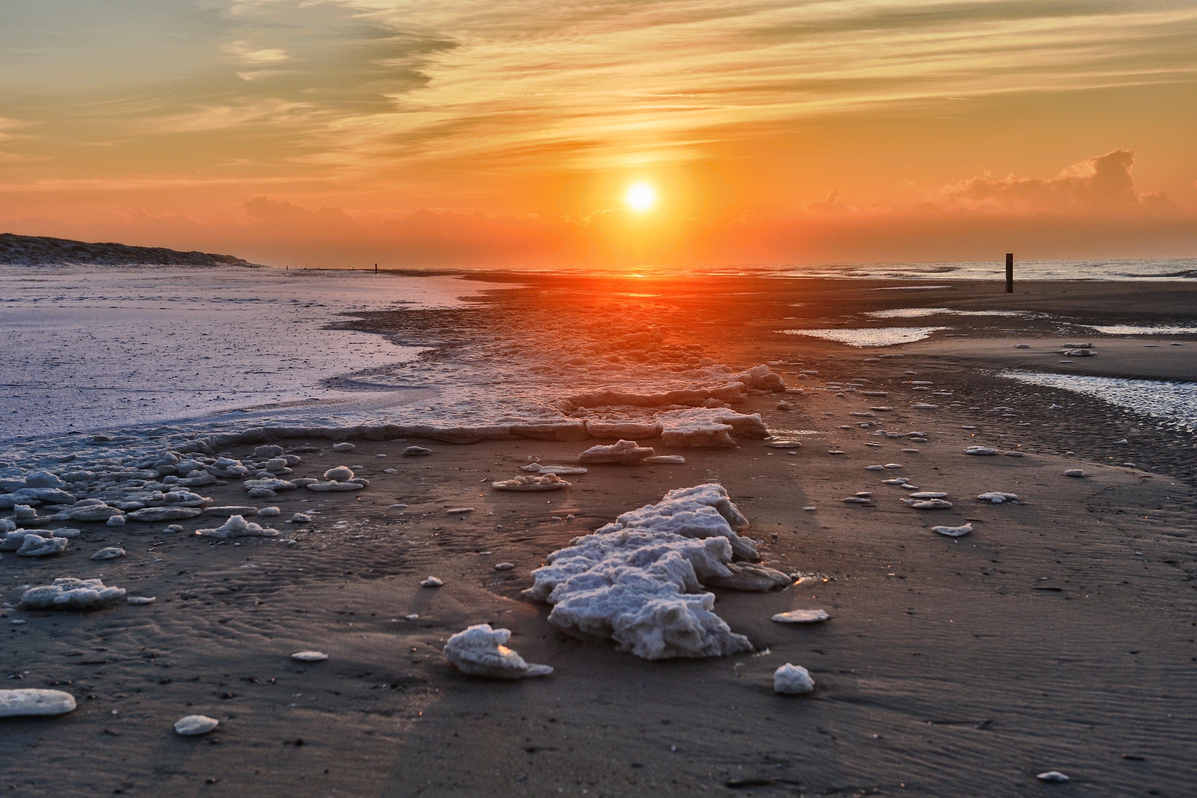 Free stock photo of beach, golden sunset, see, snow