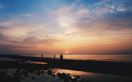 Free stock photo of beach, dawn, do son