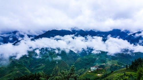Gratis stockfoto met berg, bergketen, blauwe bergen, boom