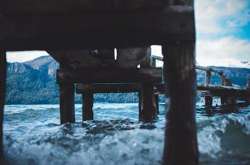 海, 海洋, 碼頭 的 免費圖庫相片