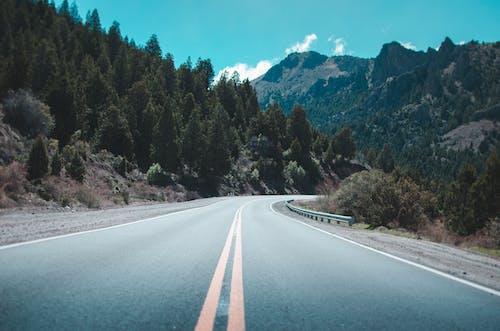 Gratis arkivbilde med Argentina, asfalt, bane, blå himmel