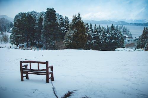 Деревянная скамейка на снежном поле под голубым небом