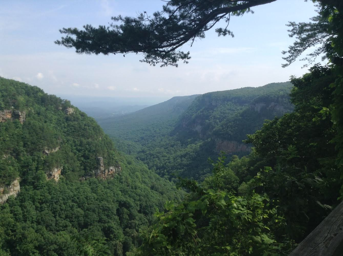 Free stock photo of canyon, Cloudland, Steven Wooddell, Tennessee