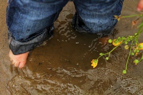 Безкоштовне стокове фото на тему «вода, джинси, квітка, комбінезон»