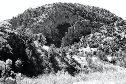 Základová fotografie zdarma na téma černobílý, cestovní ruch, dřevo, hora
