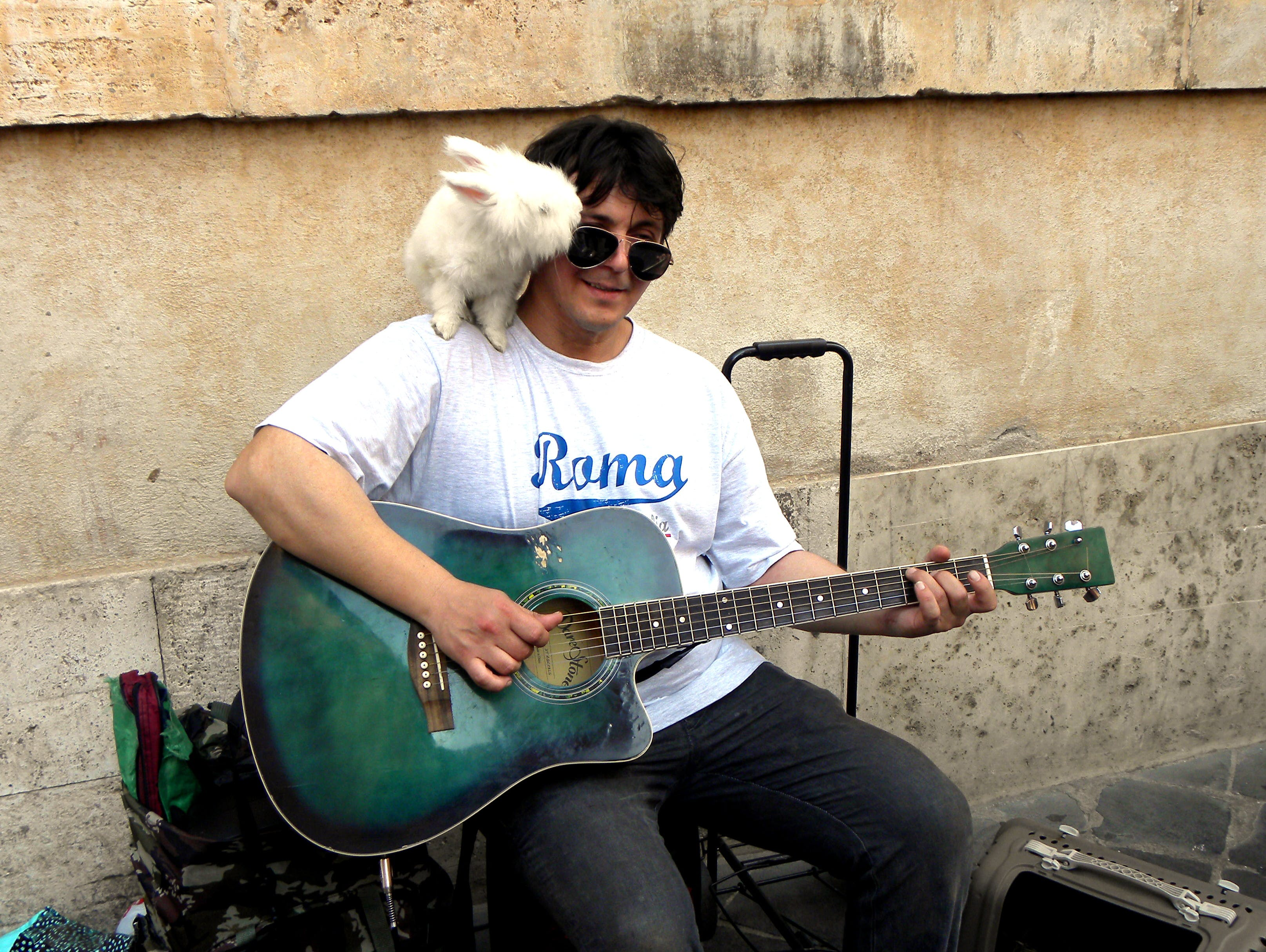 Free stock photo of rome, street musician, street musician with rabbit