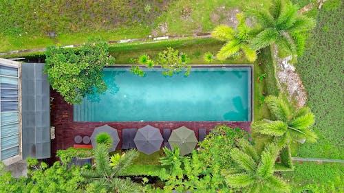 Darmowe zdjęcie z galerii z basen, indonezja, kurort, parasole