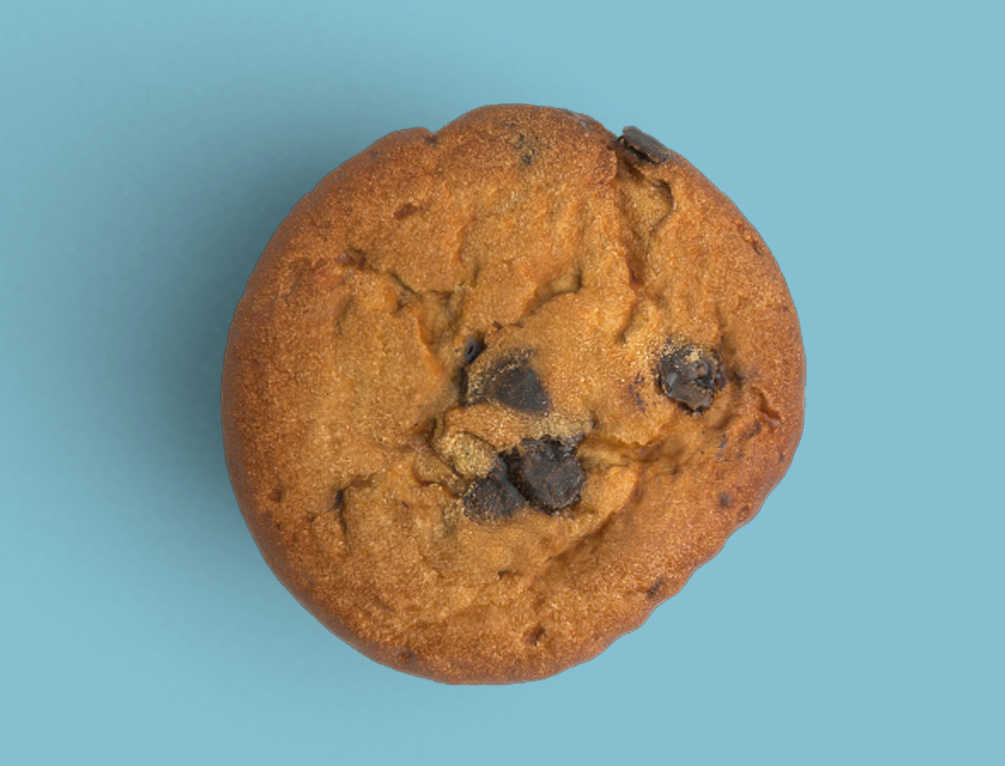 Free stock photo of background, blue, blue background, cookie