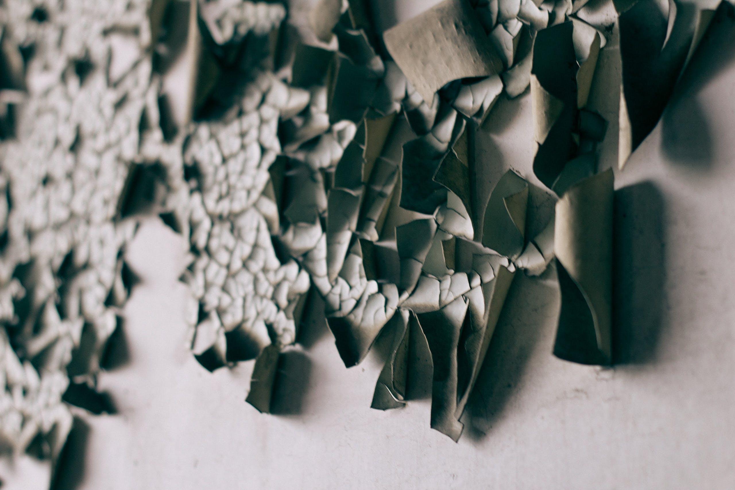 創作的, 專注, 模糊, 牆壁 的 免費圖庫相片