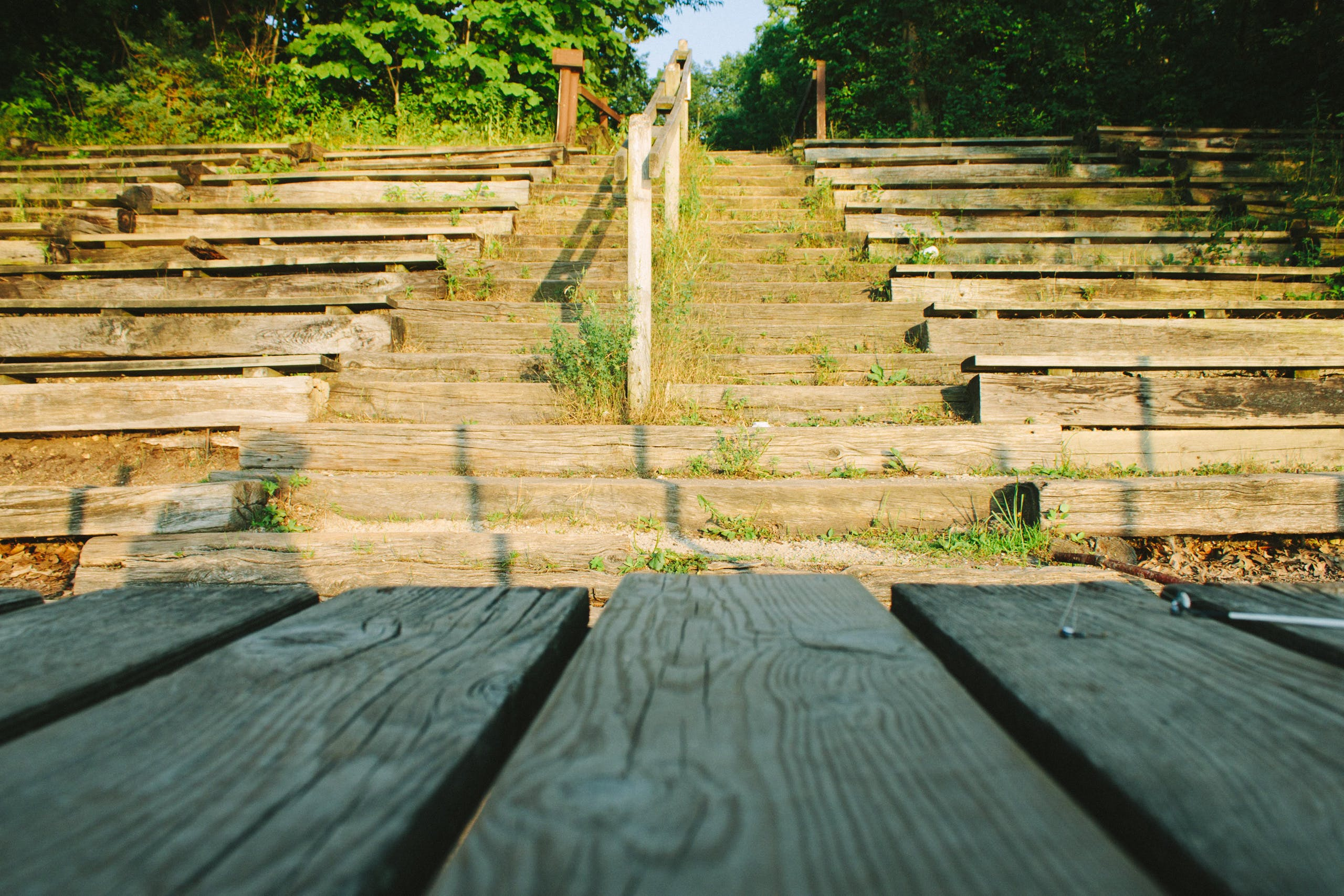 Free stock photo of wood, stairs, bench, trees