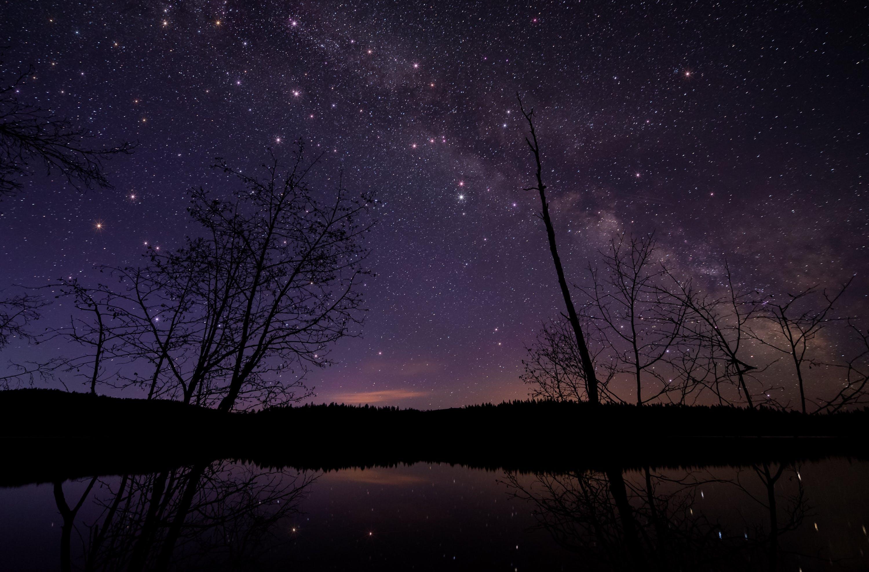 astrofotografie, astronomie, bäume