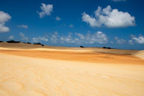 Ingyenes stockfotó arany dűnék, arany homok, Brazília, drámai ég témában