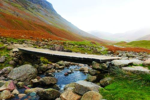 Бесплатное стоковое фото с горы, красивая, природа, яркие цвета